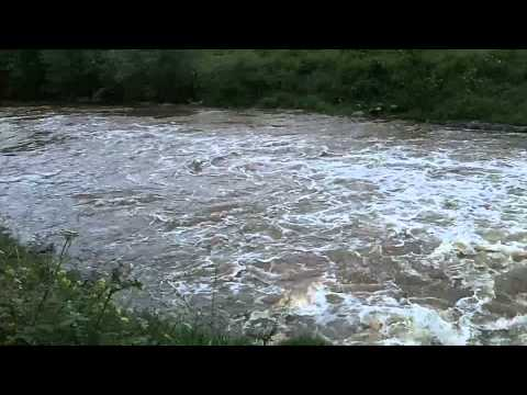 Knightwick Weir