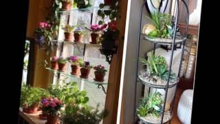 22 идеи для создания мини сада в своем доме