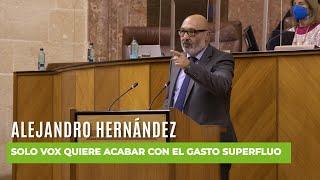 ¡Brutal repaso de ALEJANDRO HERNÁNDEZ a PSOE y Adelante Andalucía!
