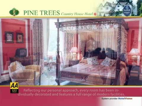 Pine Trees Coutry House Hotel