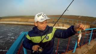 Ловля окуня в отвес. Рыбалка на шлюзе Битикского водохранилища.