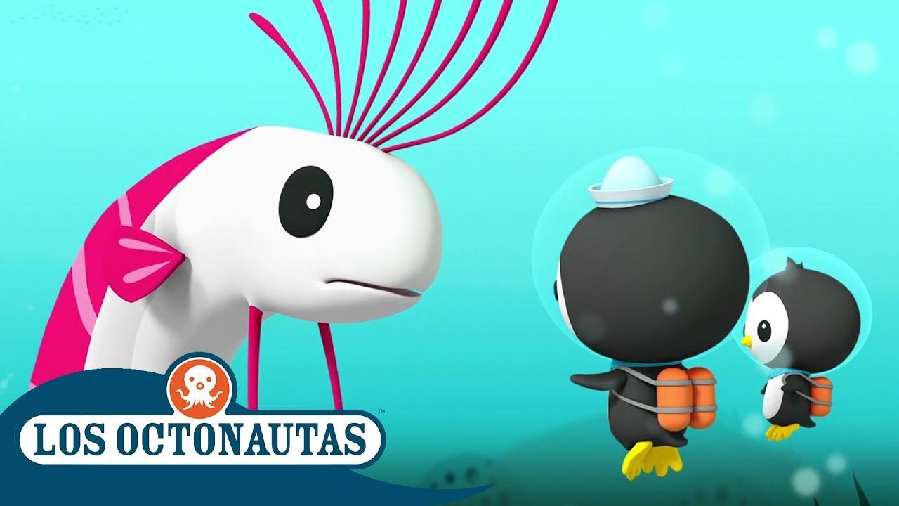Los Octonautas Oficial en Español - El pez remo   Episodios completos