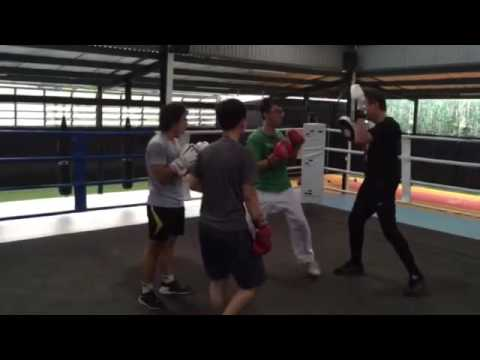Vietnamese-German University Saigon Boxing