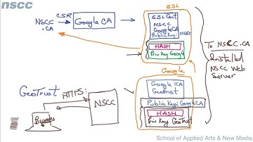 Digital Certificates: Chain of Trust