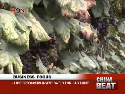 Juice producers investigated for bad fruit - China Beat - Sep 24 ,2013 - BONTV China