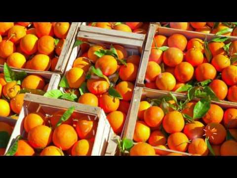 Вареная кукуруза калорийность, полезные свойства и вред