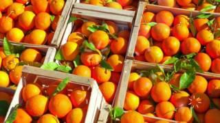 видео Калорийность Сок грейпфрутовый - Пищевая ценность. Сколько калорий