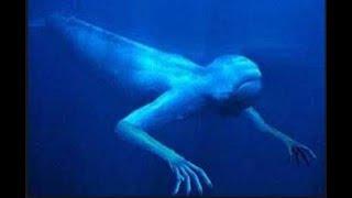 Bí ẩn 'qu/á/i v/ậ/t' khổng lồ giống người dưới đáy đại dương