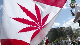 What the Canadian cannabis market will look like