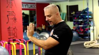 HOW TO DO WING CHUN SIL LIM TAO - PART 1