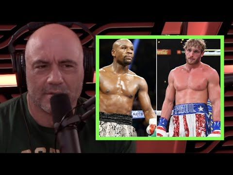 Joe Rogan on Floyd Mayweather vs. Logan Paul