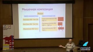 видео Типы мышечных волокон (медленные, быстрые)