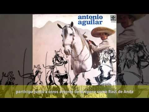Armando Soto La Marina - Biografía