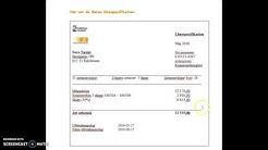 Sfi B1:Om lön och att läsa en lönespecifikation