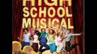 high school musical were all in this together chipmunk song