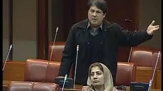 Pakistani senator Saif Ali calls out anti-Israeli politicians in Senate