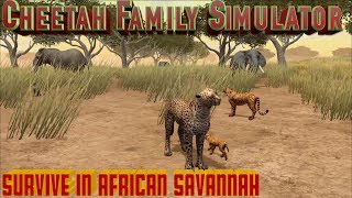 Cheetah Family Simulator-Survive The Wildness- By Gluten Free Games-IOS/Android
