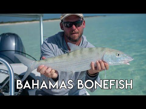 Bahamas Bonefish Experience