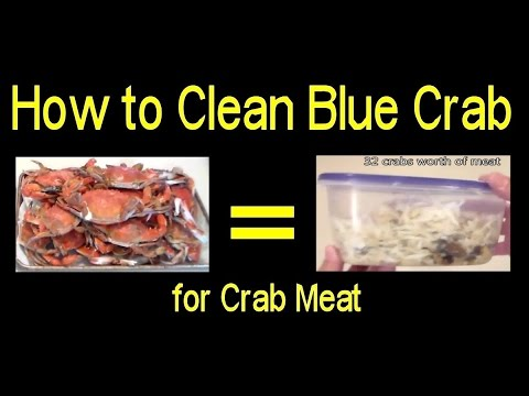 Crab Meat - How to Clean Blue Crab