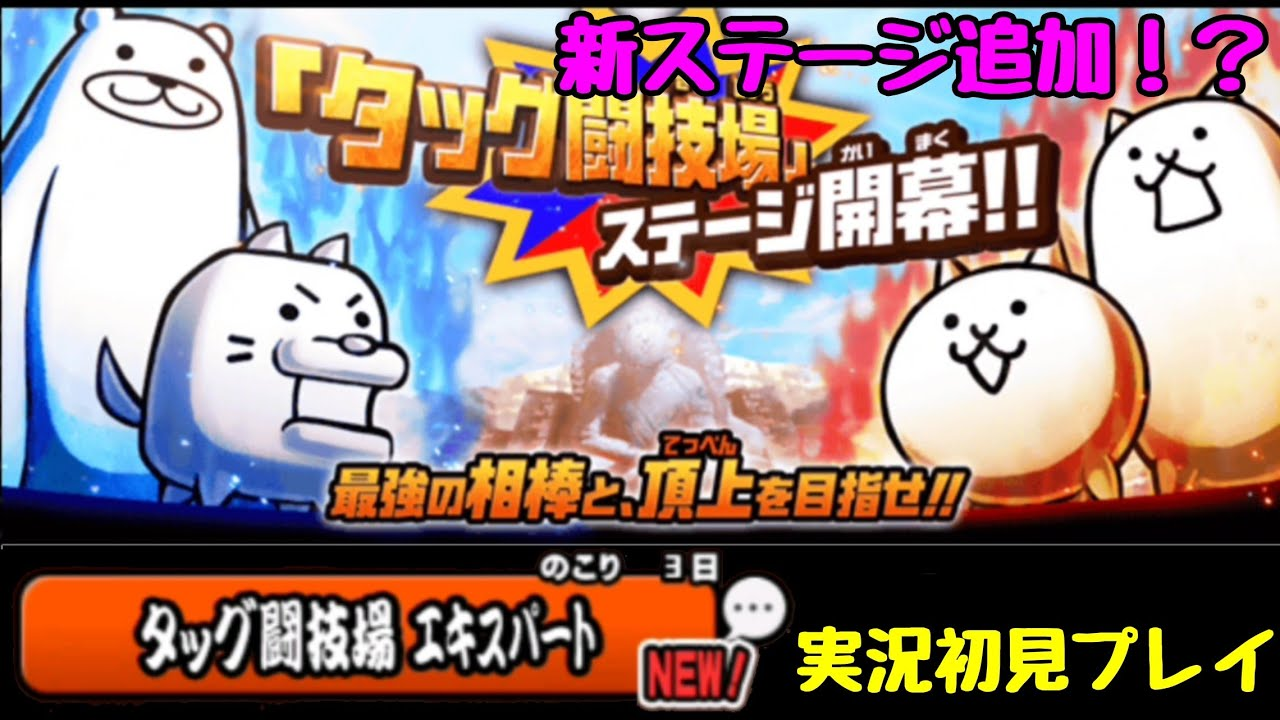 タッグ 闘技 場 エキスパート タッグ闘技場 エキスパート - 道草ログ