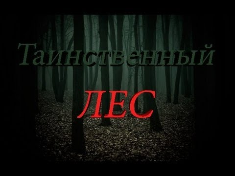 Новый фильм ужасов Таинственный лес