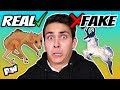 Real vs Fake Mythical Creatures + Folklore | Guess the real or fake mythological creatures