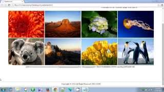 How To Make a Website Using HTML in NotePad (Step by Step)