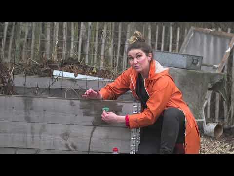 Hemma hos Jessica v 8 Vertikalodling Market gardening och pumpa tips