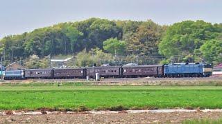 JR東日本EF64 37+旧型客車+EF65 501 両毛線 20190421