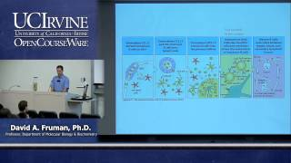 Biological Sciences M121. Immunology with Hematology. Lecture 15. Immunity by B Cells & Antibodies.