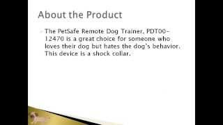 Pet Products Online | Petsafe Pdt00-12470 Remote Dog Trainer Article | Dog Training Collar