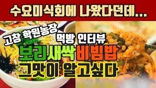 고창 맛집 학원농장 보리새싹비빔밥 그맛이 알고싶다 (비…