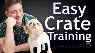 Biz nasıl Tren bir köpek Yavrusu