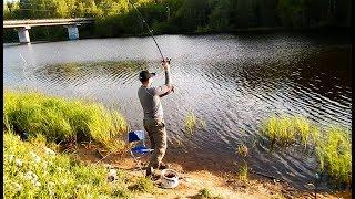[РВ] Карелія. Рибалка на фідер на незнайомій річці (червень 2017)