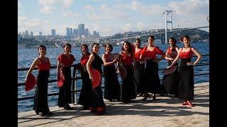 Melis Cangüler Azulmavi Flamenko Akademi 2019 Sezon Sonu Koreografisi