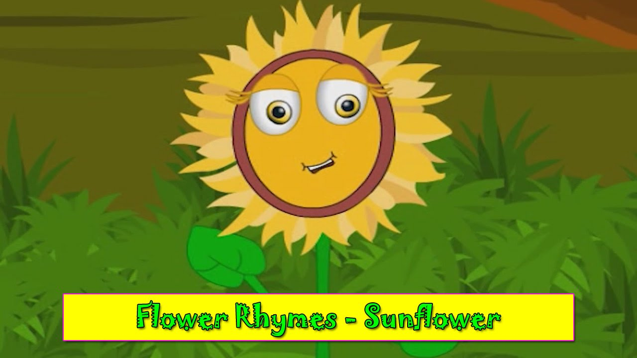 Sunflower rhyme flower rhymes for children nursery rhymes for sunflower rhyme flower rhymes for children nursery rhymes for kids most popular rhymes hd izmirmasajfo