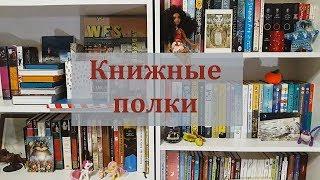 Мои книжные полки // Время историй!