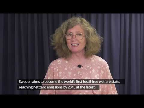 Swedish national statement for High-level Political Forum 2020
