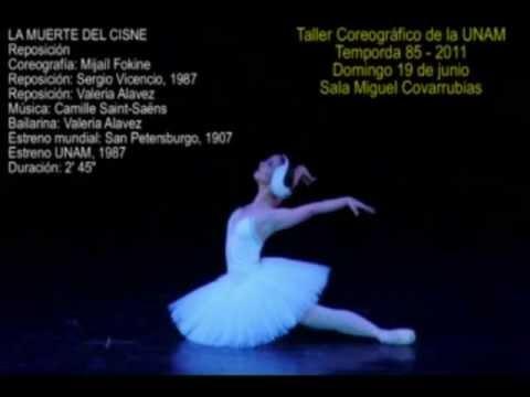La muerte del Cisne Valeria Alavez Taller coregráfico de la UNAM Ballet