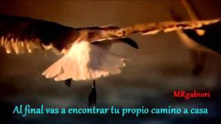 Edward Maya presents Violet Light  Love Story sub español ( XTD Club )