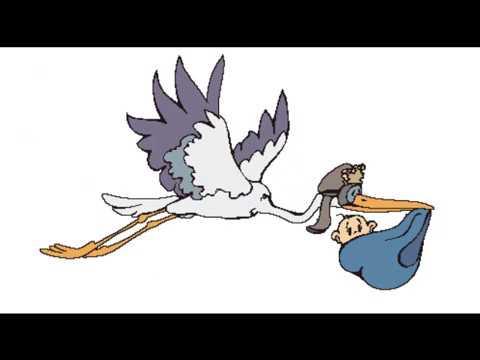 Картинки летящий аист анимация