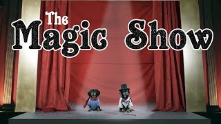 Ep 6: The Magic Show  Funny Dogs Put on Cute Magic Show