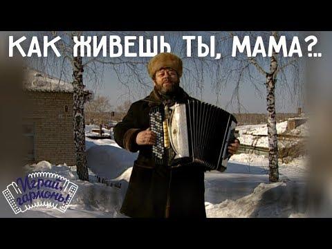 Играй, гармонь! | Геннадий Заволокин | Как живёшь ты, мама?..