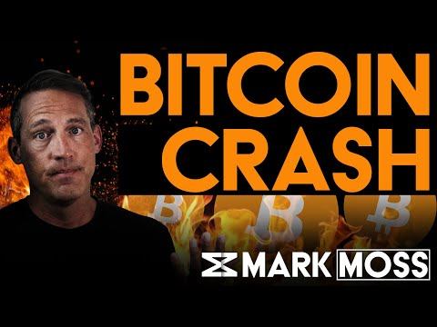 Will Bitcoin Survive 2021 Market Crash | New Data