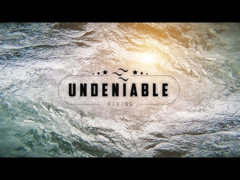 Undeniable | Diving