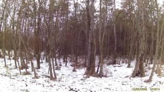 В Запорожской области сознательно уничтожают Старобердянский лес, площадью 7 500 га(Этот ролик обработан в Видеоредакторе YouTube (http://www.youtube.com/editor), 2016-12-28T08:38:09.000Z)