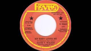 David T Walker - My Baby Loves Me