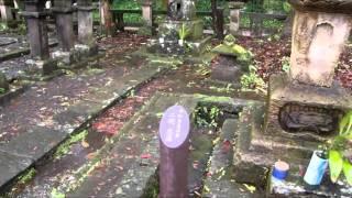 篤姫の父など島津家歴代の墓地.