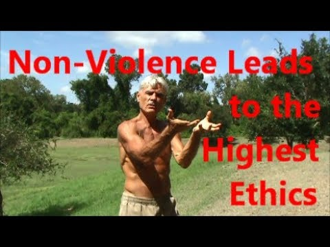 Non-Violence Leads to the Highest Ethics