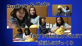 Audrey & Kate try POMELO fruit ざぼんを食べるオードリー&ケイト